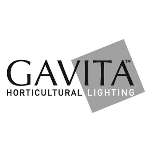 Gavita-1.jpg